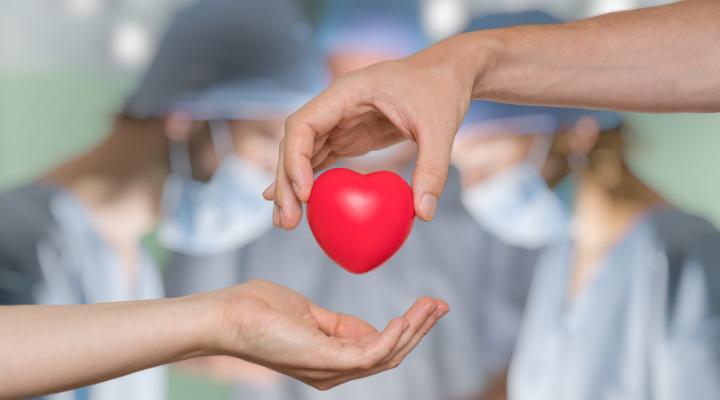 Día Nacional del Transplante de Organos